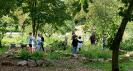 SAP-Mitarbeiter und viele Schüler basteln, ernten und pflanzen_5
