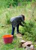 Wässern Pflegen und Gestalten im Schulgarten_22