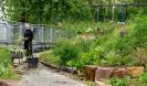 Wässern Pflegen und Gestalten im Schulgarten_25