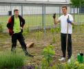 Wässern Pflegen und Gestalten im Schulgarten_27